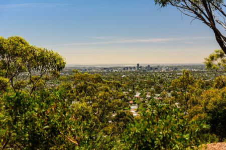 Windy Point Lookout 4