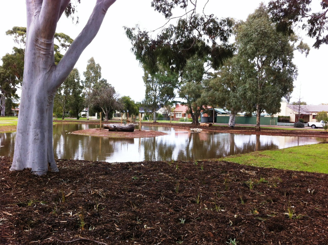 Harvey Hayes Reserve in Daw Park After